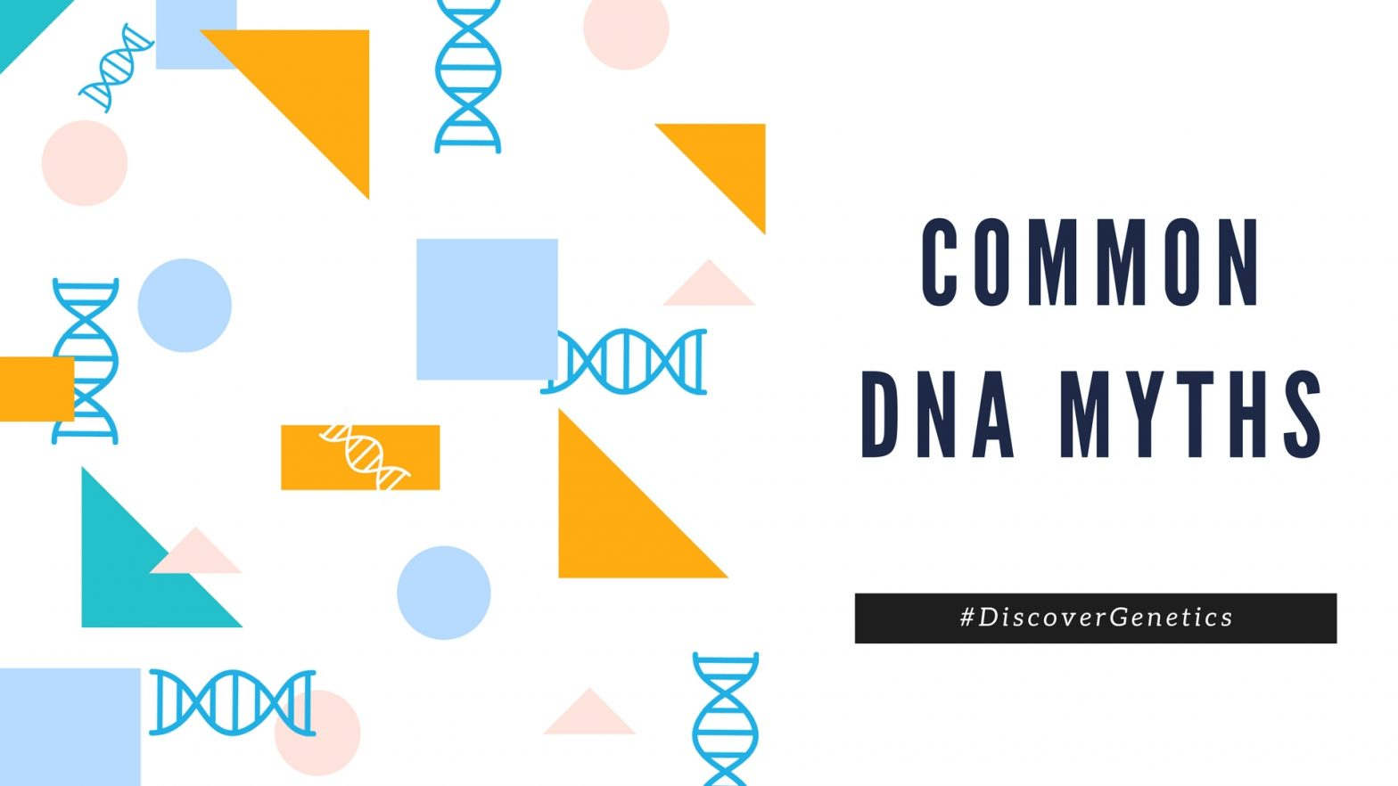 Common DNA Myths